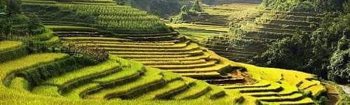 Partez en groupe pour découvrir le Vietnam